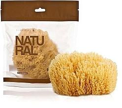 Perfumería y cosmética Esponja marina de origen natural - Suavipiel Natural Sea Sponge