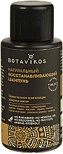 Perfumería y cosmética Champú natural reparador con aceite de sándalo, jazmín y nuez moscada - Botavikos Natural Repairing Shampoo (mini)