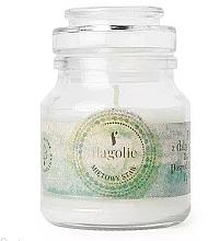 Perfumería y cosmética Vela aromática en tarro, menta - Flagolie Scented Candle Boho Mint Pond