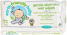 Perfumería y cosmética Toallitas húmedas hipoalergénicas para bebés - Earth Friendly Baby Aloe Vera Wet Wipes