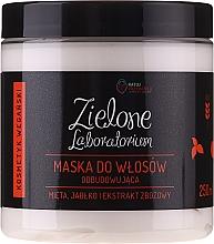 Perfumería y cosmética Mascarilla capilar con extracto de menta y manzana - Zielone Laboratorium