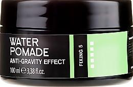 Perfumería y cosmética Pomada para barba y cabello - Niamh Hairconcept Dandy Anti-Gravity Effect Water Pomade