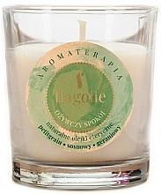 Perfumería y cosmética Vela perfumada de soja con aceite esencial de geranio - Flagolie Fragranced Candle Refreshing Peace