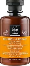 Perfumería y cosmética Champú nutritivo y reparador con aceite de oliva y miel - Apivita Nourish And Repair Shampoo With Olive And Honey