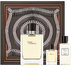 Perfumería y cosmética Hermes Terre D'Hermes - Set (eau de toilette/100ml + loción aftershave/40ml + eau de toilette/mini/5ml)