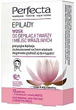Perfumería y cosmética Cera depilatoria para rostro y zonas sensibles - Perfecta Epilady