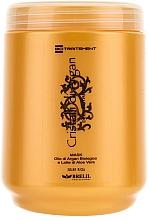 Perfumería y cosmética Mascarilla capilar con aceite de argán y jugo de aloe vera - Brelil Bio Traitement Cristalli d'Argan Mask Deep Nutrition