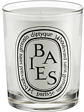 Perfumería y cosmética Vela aromática - Diptyque Baies Candle