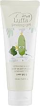 Perfumería y cosmética Peeling gel facial con extracto de luffa - Esfolio Luffa Peeling Gel