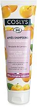 Perfumería y cosmética Acondicionador con aceite de ciruela mirabel - Coslys Dry Hair Conditioner