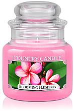 Perfumería y cosmética Vela en tarro con aroma a madreselva & almizcle - Country Candle Blooming Plumeria