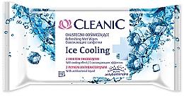 Perfumería y cosmética Toallitas húmedas, 15 uds. - Cleanic Ice Cooling Wipes