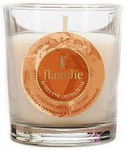 Perfumería y cosmética Vela perfumada de soja con aroma especiado - Flagolie Fragranced Candle Relaxing Spice