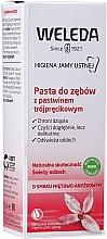 Perfumería y cosmética Pasta dental refrescante para fortalecimiento de encías - Weleda Rathania-Zahncreme