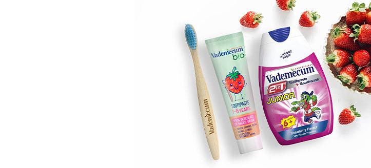 Por la compra de cualquier producto Vademecum, llévate de regalo un cepillo de dientes a elegir