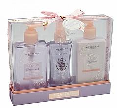 Perfumería y cosmética Set corporal - Cassardi Lavender (gel de ducha 200ml +loción 200ml + bruma 100ml)