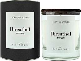 Perfumería y cosmética Vela aromática, oxígeno - Ambientair The Olphactory Black Design Breathe Oxygen