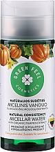 Perfumería y cosmética Agua micelar con extracto de calabaza - Green Feel's Micellar Water