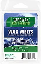 Perfumería y cosmética Cera para velas de vapor con aroma a eucalipto - Airpure VapoWax Wax Melts
