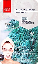 Perfumería y cosmética Mascarilla facial con extracto de arándano, manzana y limón sin parabenos - Czyste Piekno Peel Mask