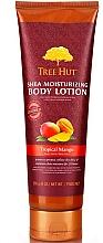 """Perfumería y cosmética Loción corporal """"Mango tropical"""" - Tree Hut Shea Moisturizing Body Lotion"""