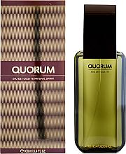 Perfumería y cosmética Antonio Puig Quorum - Eau de toilette