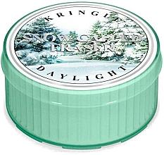 Perfumería y cosmética Vela de té con aroma a ámbar y musgo - Kringle Candle Snow Capped Fraser Daylight
