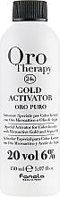 Perfumería y cosmética Activador profesional con oro microactivo y aceite de argán, 6% Vol. 20 - Fanola Oro Gold
