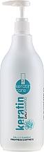 Perfumería y cosmética Champú de uso diario con queratina - Alexandre Cosmetics Keratin Care Daily Shampoo