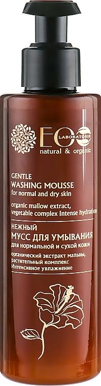 Mousse de limpieza facial con extractos de malva y arándanos - ECO Laboratorie Washing Mousse — imagen N1