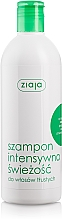 Perfumería y cosmética Champú para cabello graso con extractos de menta y ortiga - Ziaja Shampoo