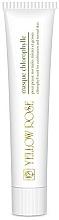Perfumería y cosmética Mascarilla facial con clorofila, aceite de lanolina y arcilla caolín - Yellow Rose Masque Chlorophylle