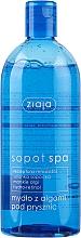 Perfumería y cosmética Gel de ducha con algas marinas y pantenol - Ziaja Sopot Spa Shower Gel