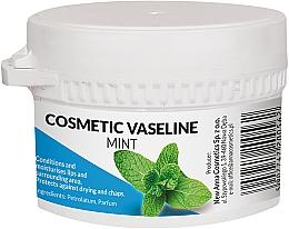 Perfumería y cosmética Vaselina cosmética con aroma a menta - Pasmedic Cosmetic Vaseline Mint