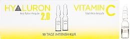 Perfumería y cosmética Ampollas faciales con vitamina C - Alcina Hyaluron 2.0 & Vitamin C Ampulle