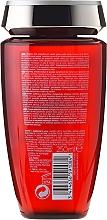 Champú micelar con aceite de nuez brasileña - Kerastase Aura Botanica Bain Micellaire Riche Shampoo — imagen N2