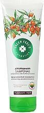 Perfumería y cosmética Champú restaurador con aceite de espino - Green Feel's Regerative Shampoo