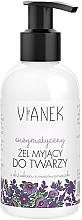 Perfumería y cosmética Gel limpiador facial con extracto de grosellero negro & aceite de camomila - Vianek Cleansing Gel