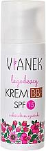 Perfumería y cosmética BB crema facial calmante protección SPF 15 con extracto de equinácea - Vianek BB 2 Cream SPF15
