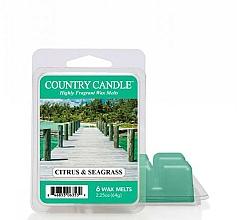 Perfumería y cosmética Cera aromática, algas marinas y cítricos - Country Candle Citrus & Seagrass Wax Melts