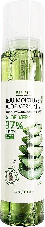 Bruma para rostro, cuerpo y cabello con aloe vera - Blumei Jeju Moisture Aloe Vera Mist