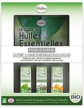 Perfumería y cosmética Galeo To Help You Work Gift Set - Set de bio aceites esenciales para el trabajo (eucalipto/10ml, menta/10ml, naranja/10ml)