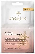 Perfumería y cosmética Mascarilla facial con canela, albaricoque y miel - Organic Lab Cleansing And Soothing Mask Cinnamon Apricot And Honey