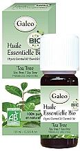 Perfumería y cosmética Aceite esencial orgánico de árbol de té - Galeo Organic Essential Oil Tea Tree