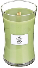 Perfumería y cosmética Vela aromática, helecho - WoodWick Hourglass Candle Fern