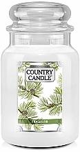 Perfumería y cosmética Vela aromática en tarro - Country Candle Fraser Fir