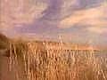 Ralph Lauren Safari Woman - Eau de Parfum — imagen N1