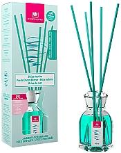 Perfumería y cosmética Ambientador Mikado con aroma a brisa marina sin alcohol - Cristalinas Reed Diffuser