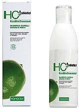 Perfumería y cosmética Champú hipoalergénico para cabello graso con gel orgánico de aloe vera - Specchiasol HC+ Shampoo For Oily Hair Sebum Regulatory