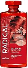 Perfumería y cosmética Champú antipolución protector de color con cola de caballo - Farmona Radical Pro Color & Shine Technology Shampoo